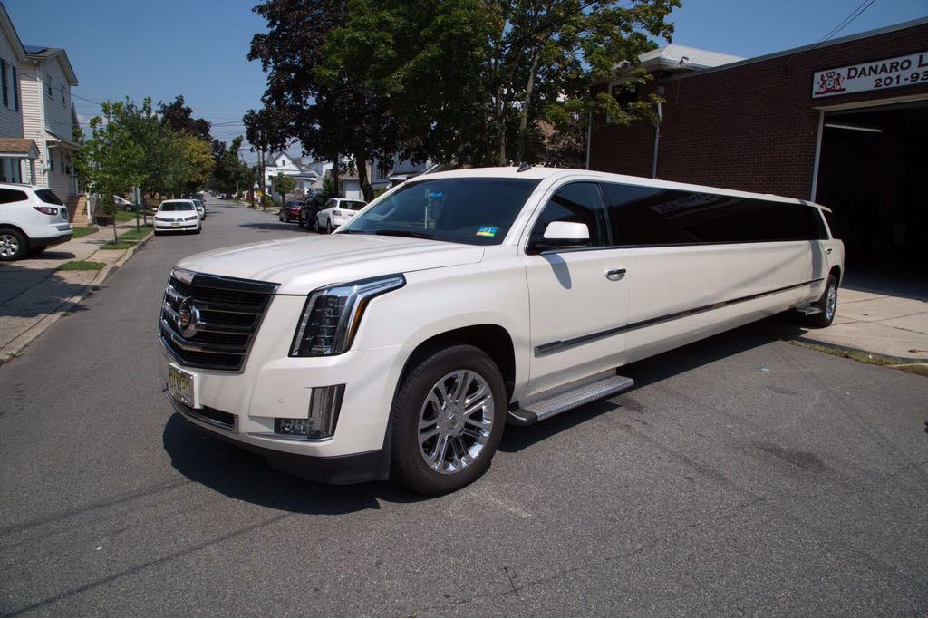 18 PAX LIMO